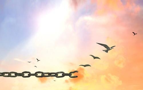 mon-avenir-voyance-les-reves-liberation